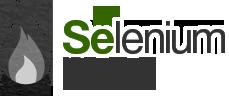 Selenium Camp 2011